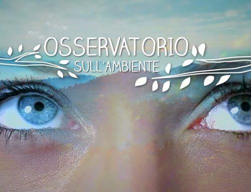 Osservatorio Coop sulla sostenibilità, II edizione